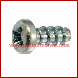 Cross Recess Self Tapping Screws Nut Bolt Screw