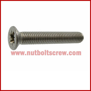 Din 965 Stainless Steel Screws india