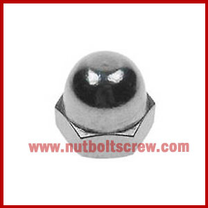 Stainless Steel Dome Nuts