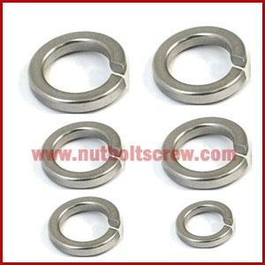 Stainless Steel Spring Washers gujarat