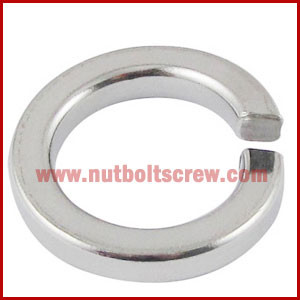 Stainless Steel Spring Washers in india