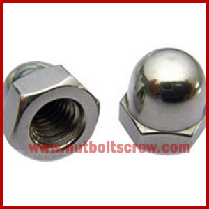stainless steel dome nuts exporters