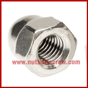 stainless steel dome nuts in gujarat