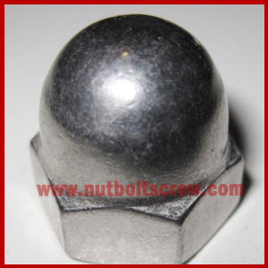 stainless steel dome nuts suppliers