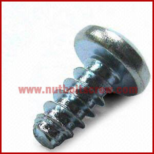 cross recess self tapping screws manufacturers