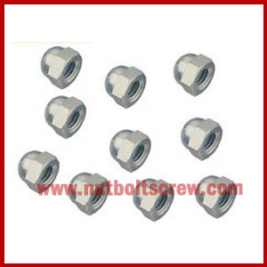 stainless steel dome nuts in india