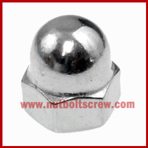 stainless steel dome nuts manufacturers in india