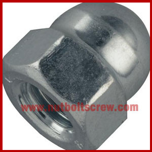 stainless steel dome nuts suppliers in india