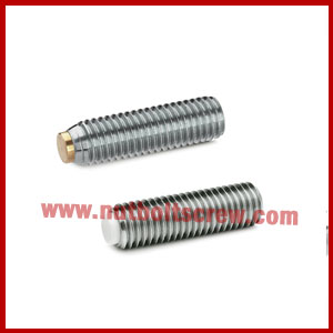 stainless steel grub screws suppliers in india