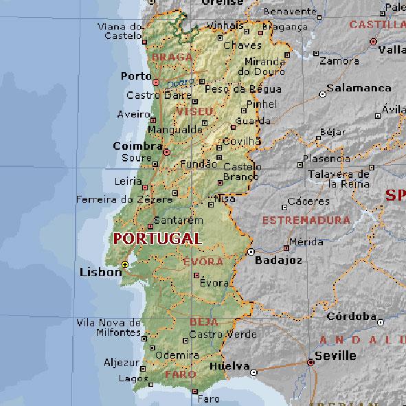 STAINLESS STEEL SCREWS portugal