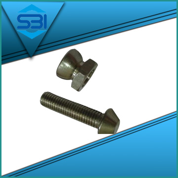 anti theft bolts Supplier in India