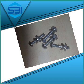 anti theft nuts supplier in Asia
