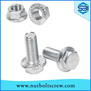 stainless-steel-flange-bolts-and-nuts